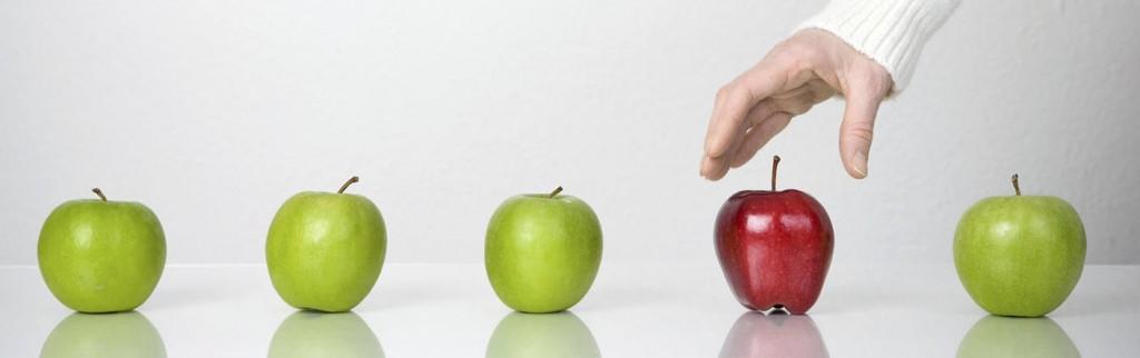E-kereskedelem - A bizalomépítés eszközei