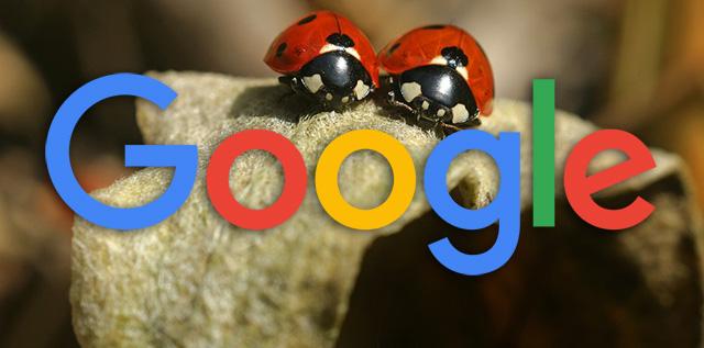 google-katica